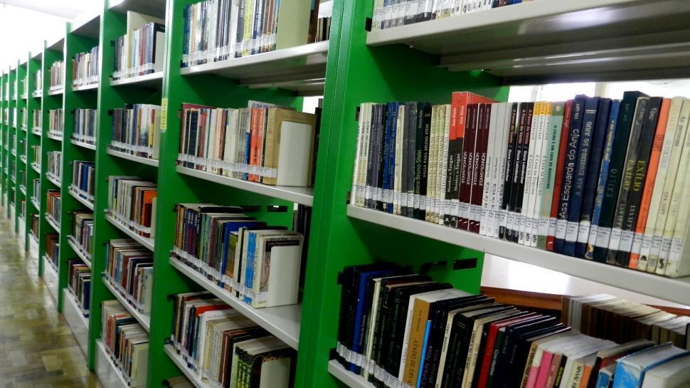Na Fundação Evangélica: livros estão disponíveis para retirada durante as férias escolares
